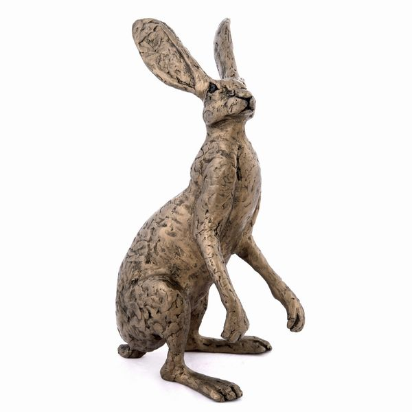 Thomas - the Dorset Hare (Jack)