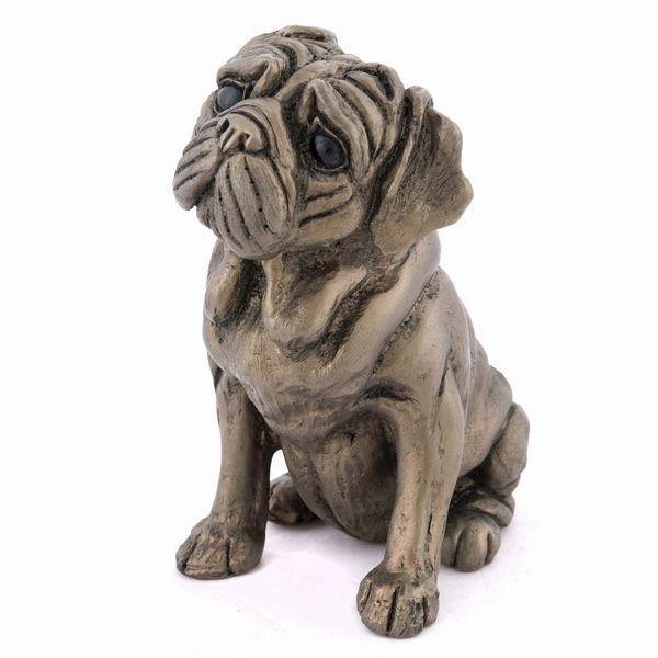 Rocky - Pug
