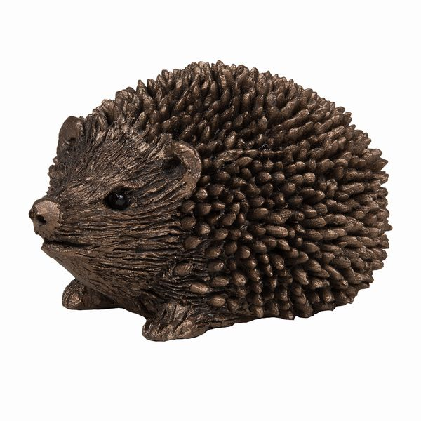 Prickly - Hoglet walking