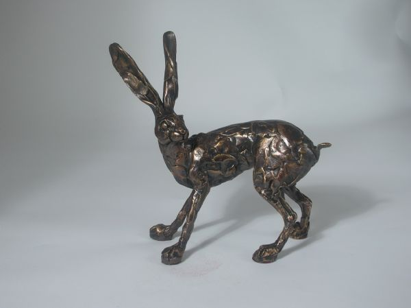 Hare standing on 4 legs